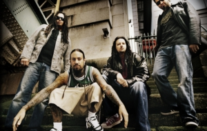 Korn High Definition