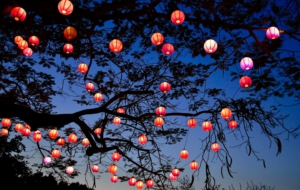 Lantern Free Download