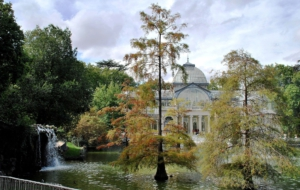 Palacio De Cristal Download