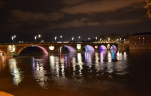Photos Of Pont Neuf, Toulouse