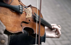 Pictures Of Violin