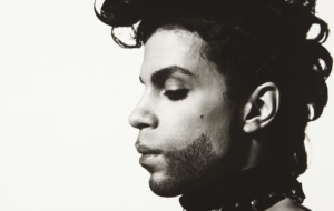 Prince Wallpapers