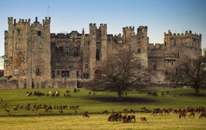 Raby Castle Computer Backgrounds