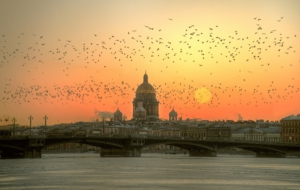 Saint Petersburg High Quality Wallpapers