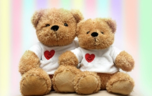 Stuffed Animal Pictures