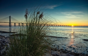 Vasco Da Gama Bridge Widescreen