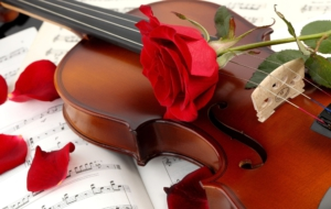 Violin High Definition Wallpapers