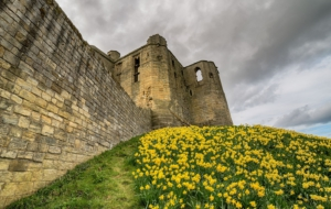 Warkworth Castle Computer Backgrounds