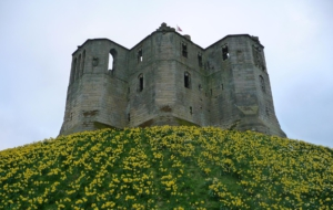Warkworth Castle HD Wallpaper