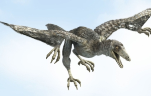 Archaeopteryx Widescreen