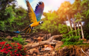 Blue And Yellow Macaw HD