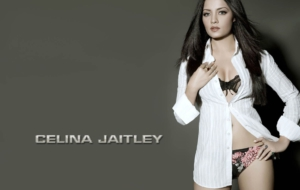 Celina Jaitley High Definition Wallpapers