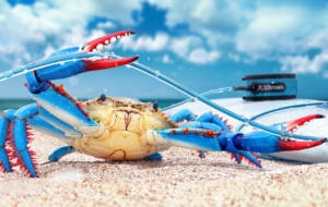 Crab For Desktop