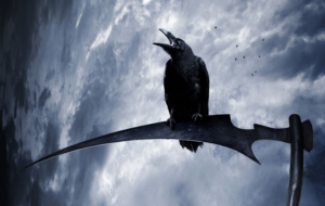 Crow Arts Computer Wallpaper