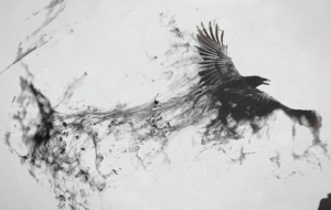 Crow Arts Photos