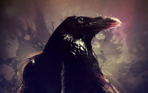 Crow Arts Pictures