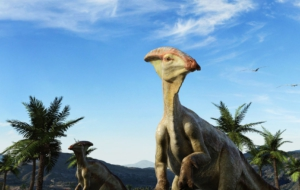 Dinosaur High Definition Wallpapers