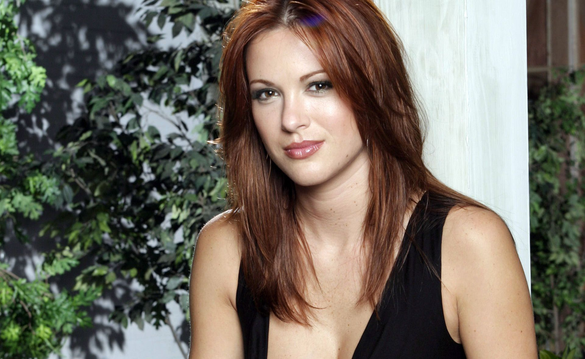 Danneel Ackles Wallpapers Backgrounds