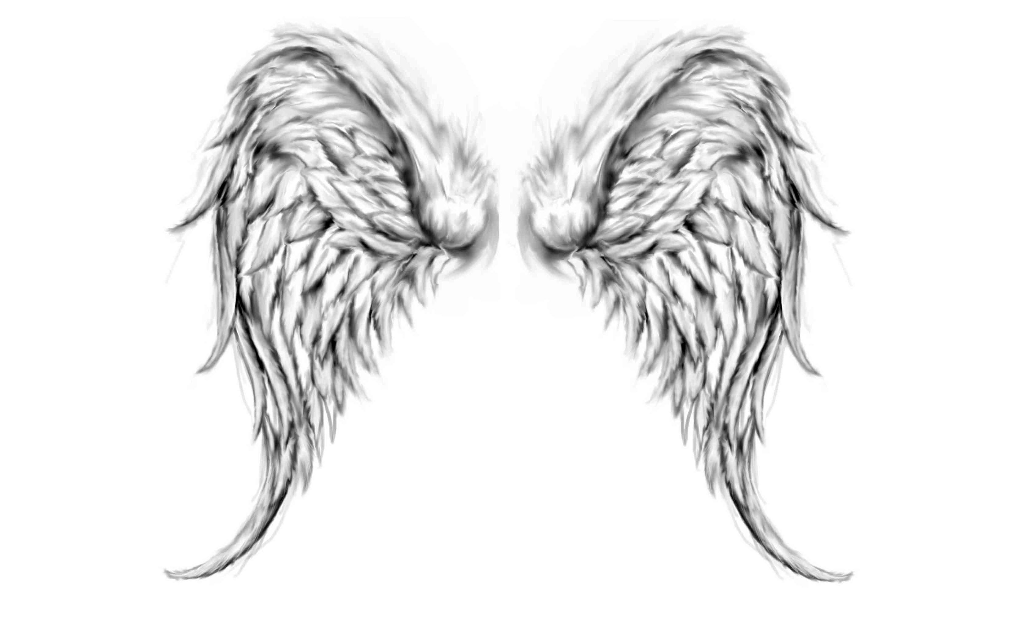 Angel Wings Wallpapers
