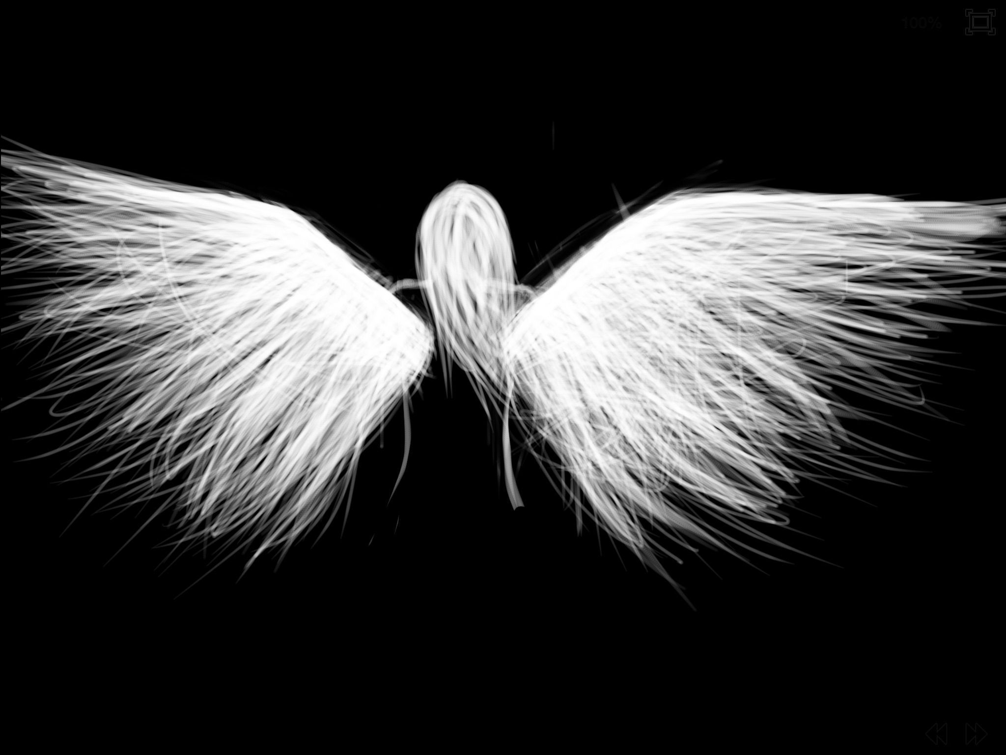 Angel Wings In High Resolution