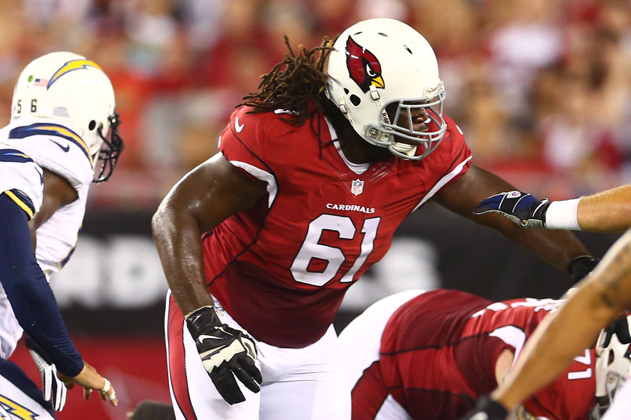 Arizona Cardinals Beautiful