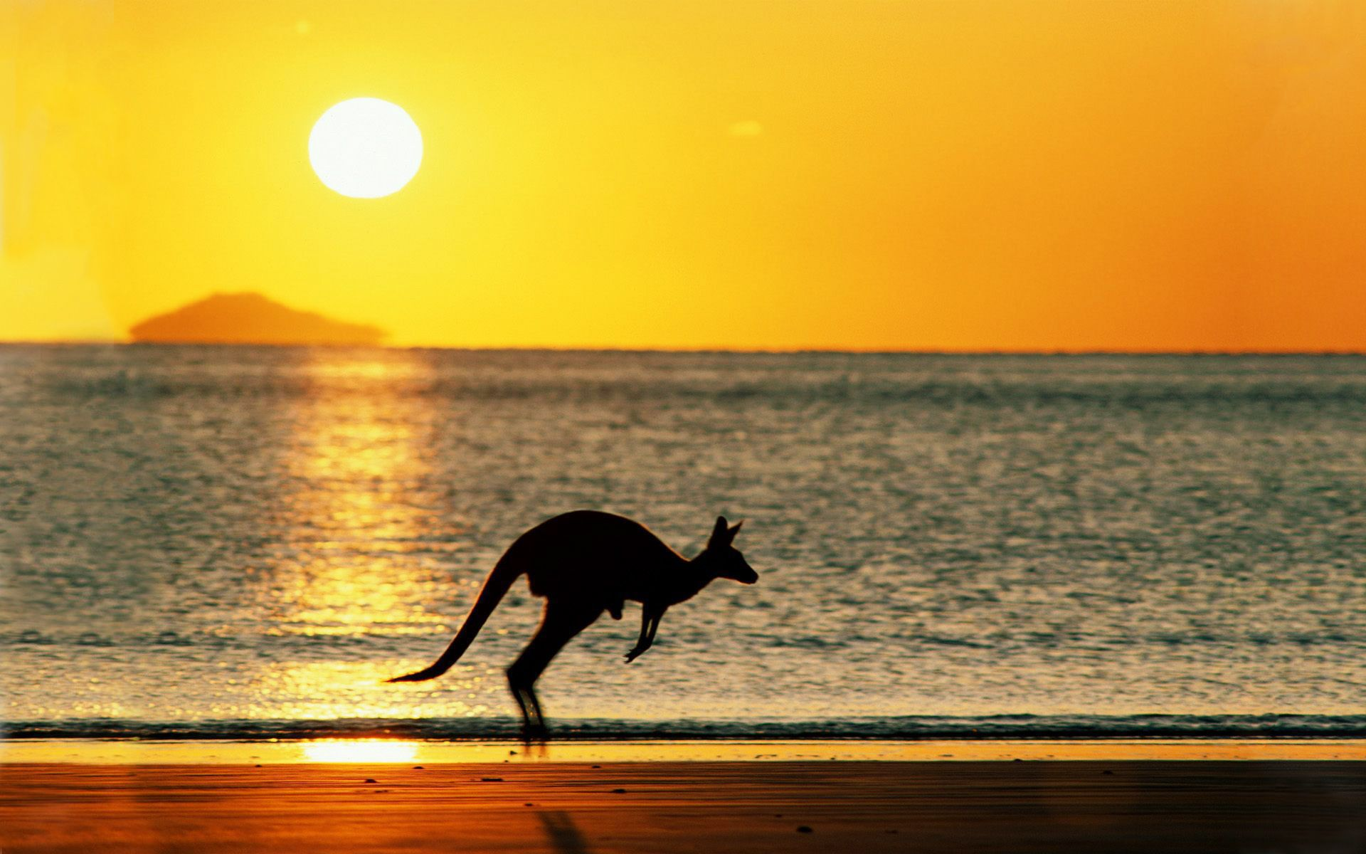 Australian Beach HD Wallpaper