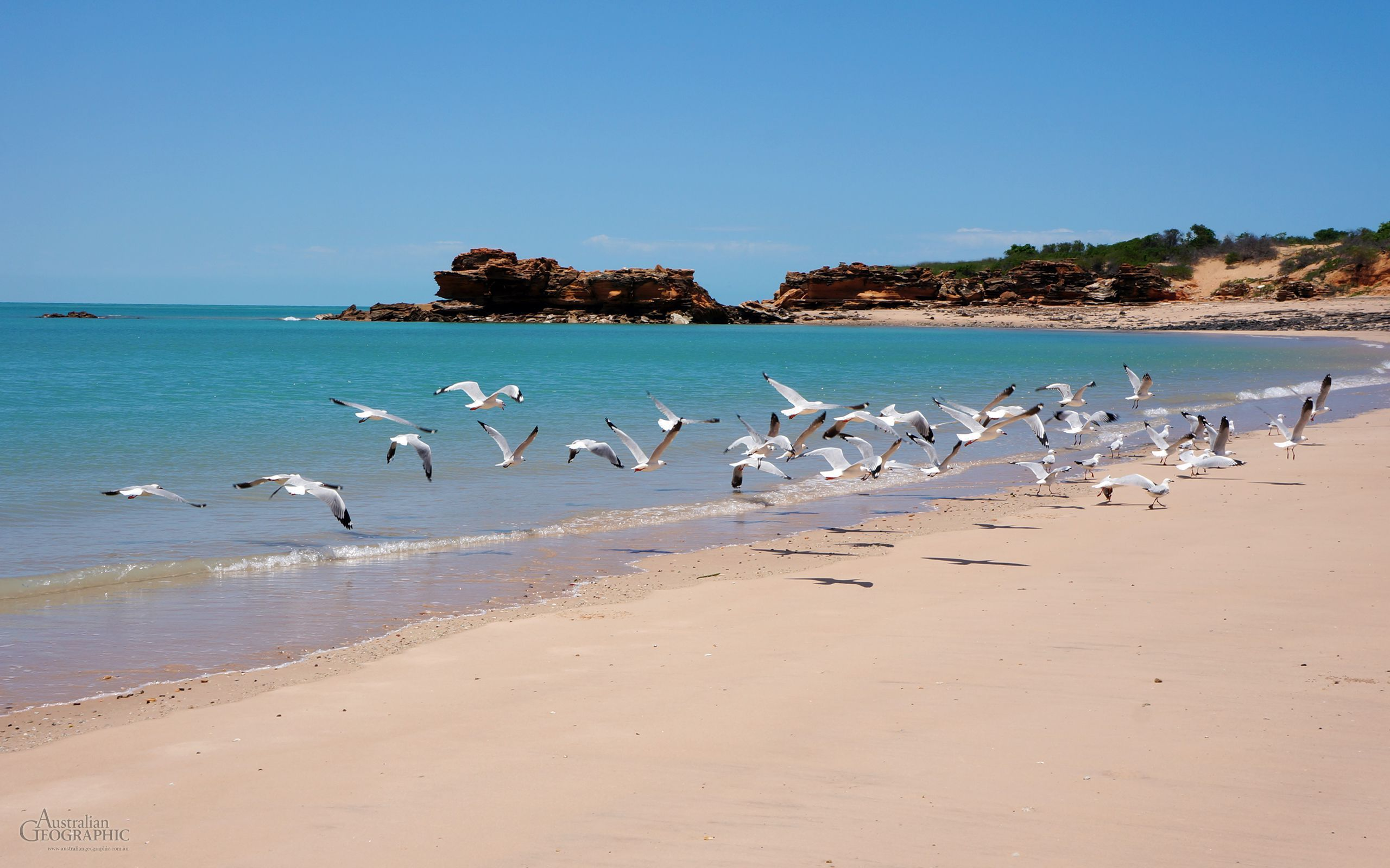 Australian Beach High Quality Wallpapers