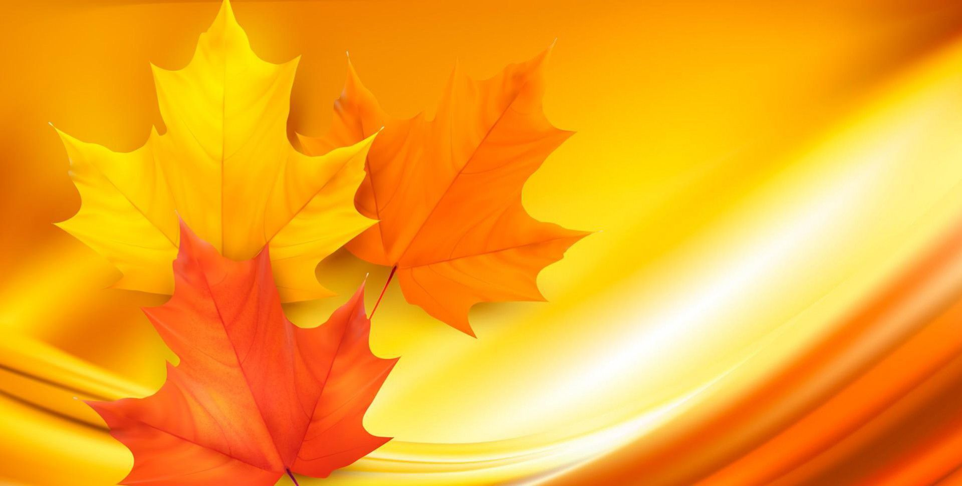 Autumn Leaves Computer Wallpaper