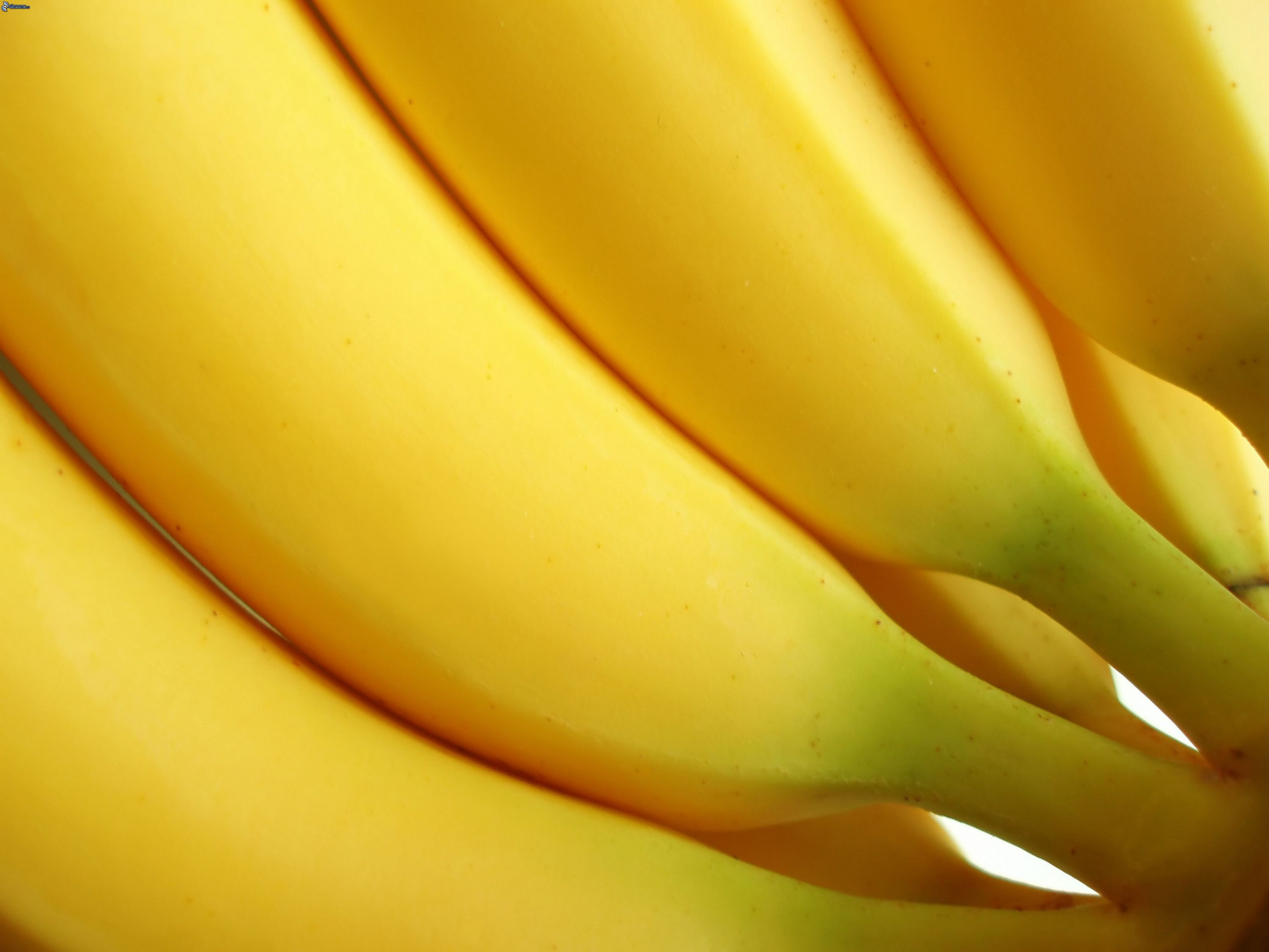 Bananas HD Desktop