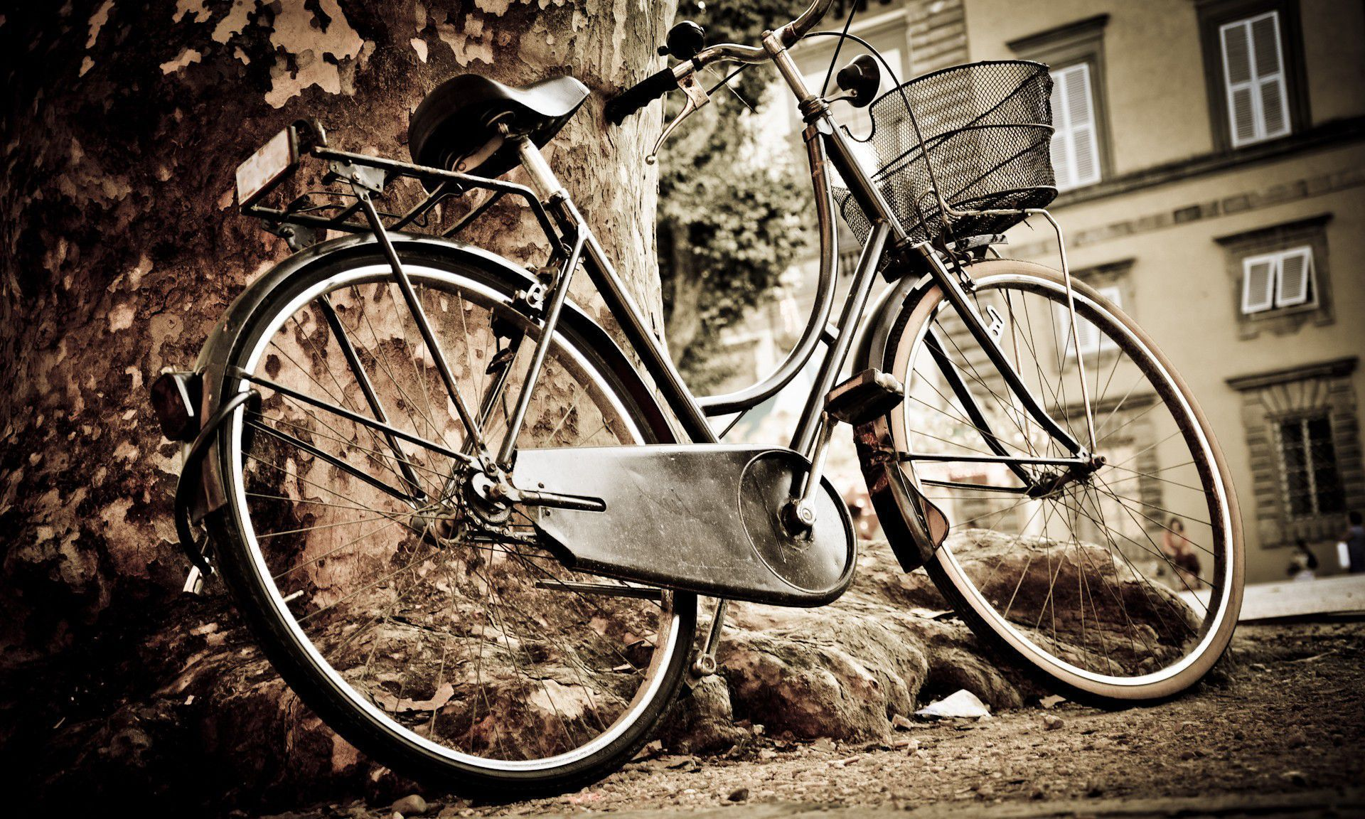 Bicycle In High Resolution