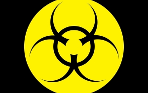 Biohazard Widescreen
