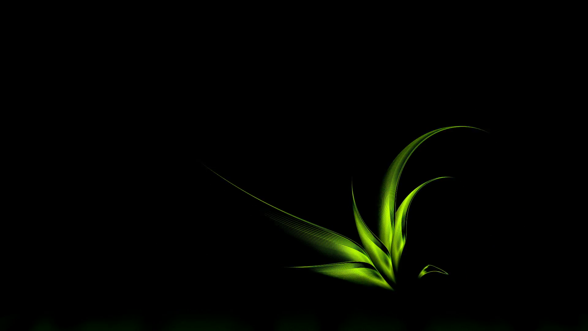 Black And Green High Quality Wallpapers