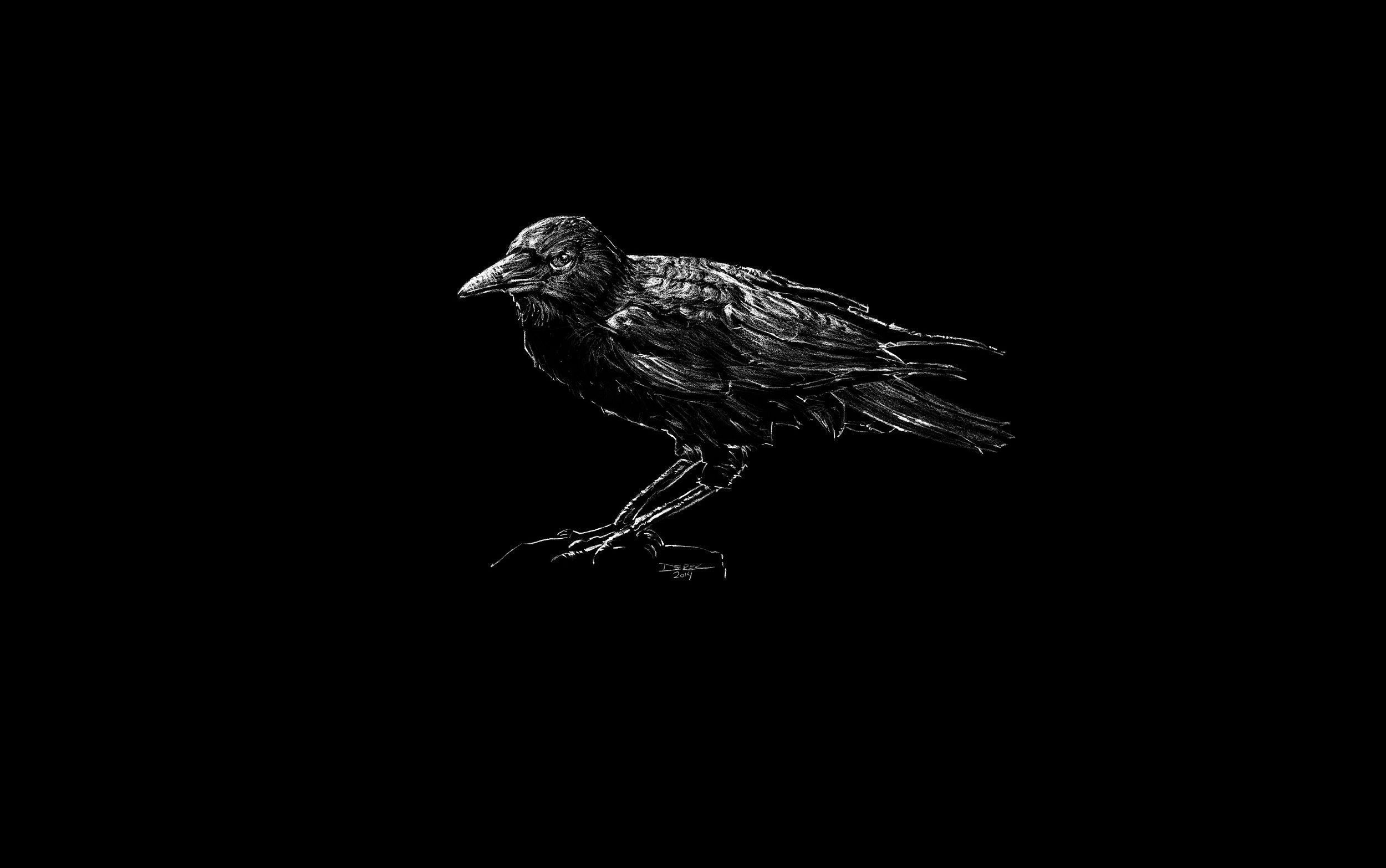 Black Bird HD Desktop
