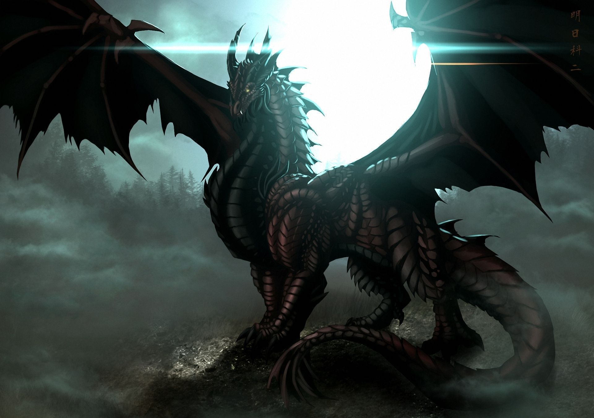 Black Dragon Wallpapers HD