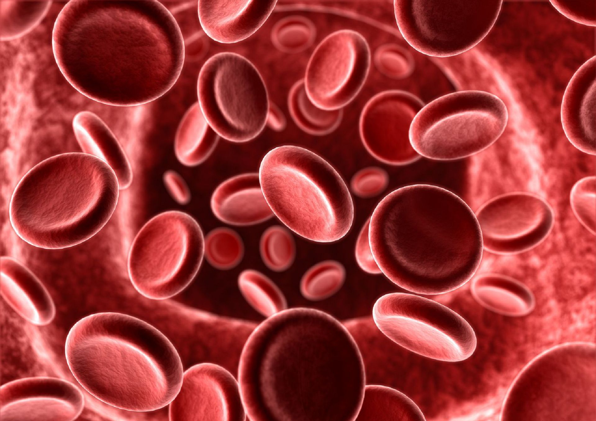 Blood Cells Beautiful