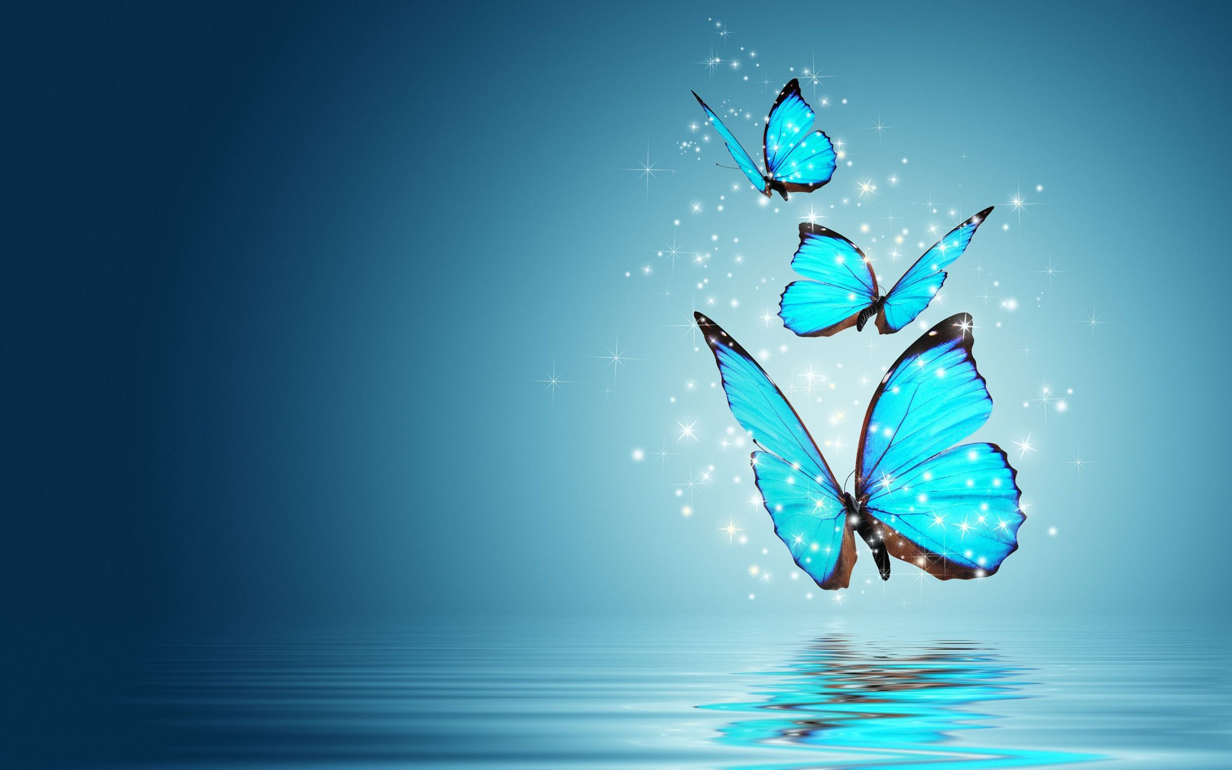 Blue Butterfly Computer Wallpaper