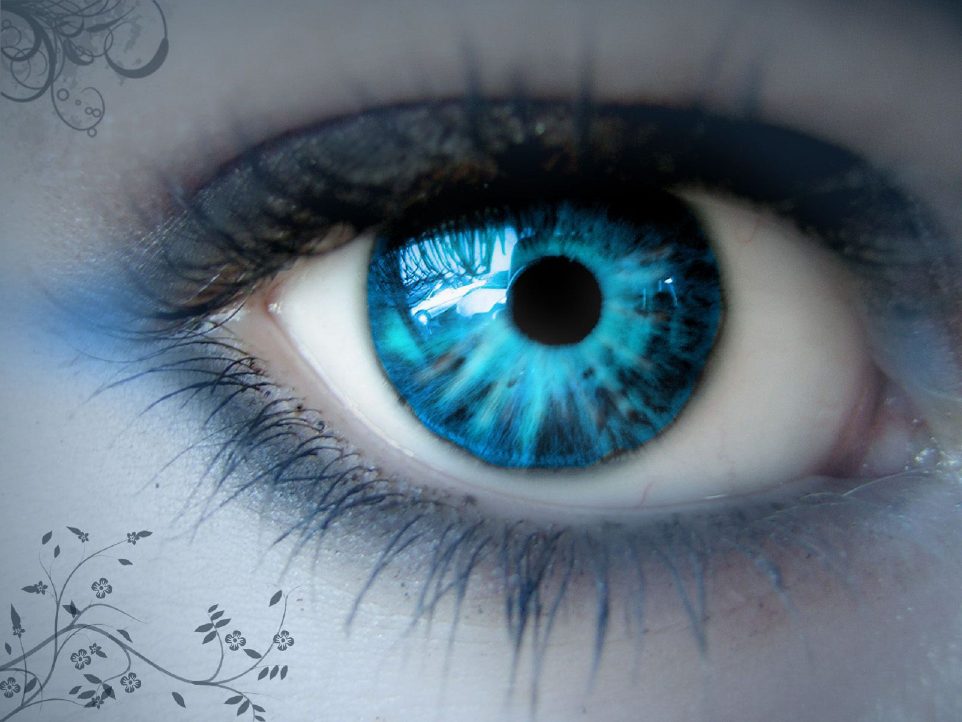 Blue Eye HD Wallpaper