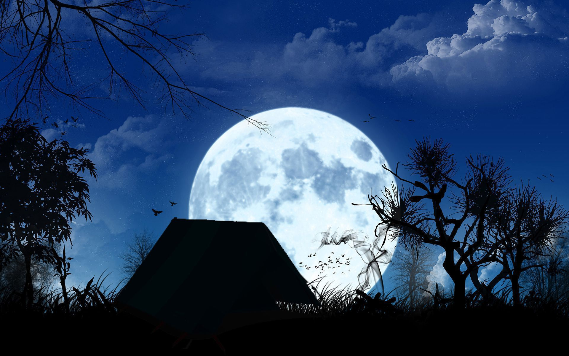 Blue Moon Photos