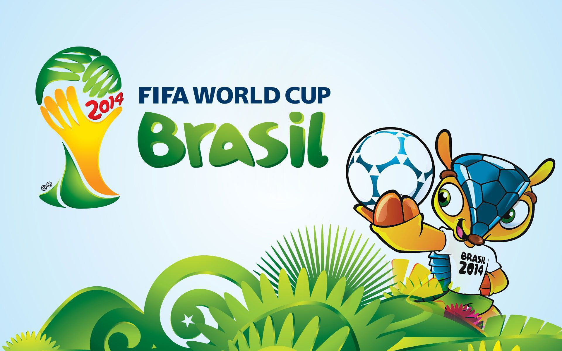 Brazil World Cup 2014 Widescreen