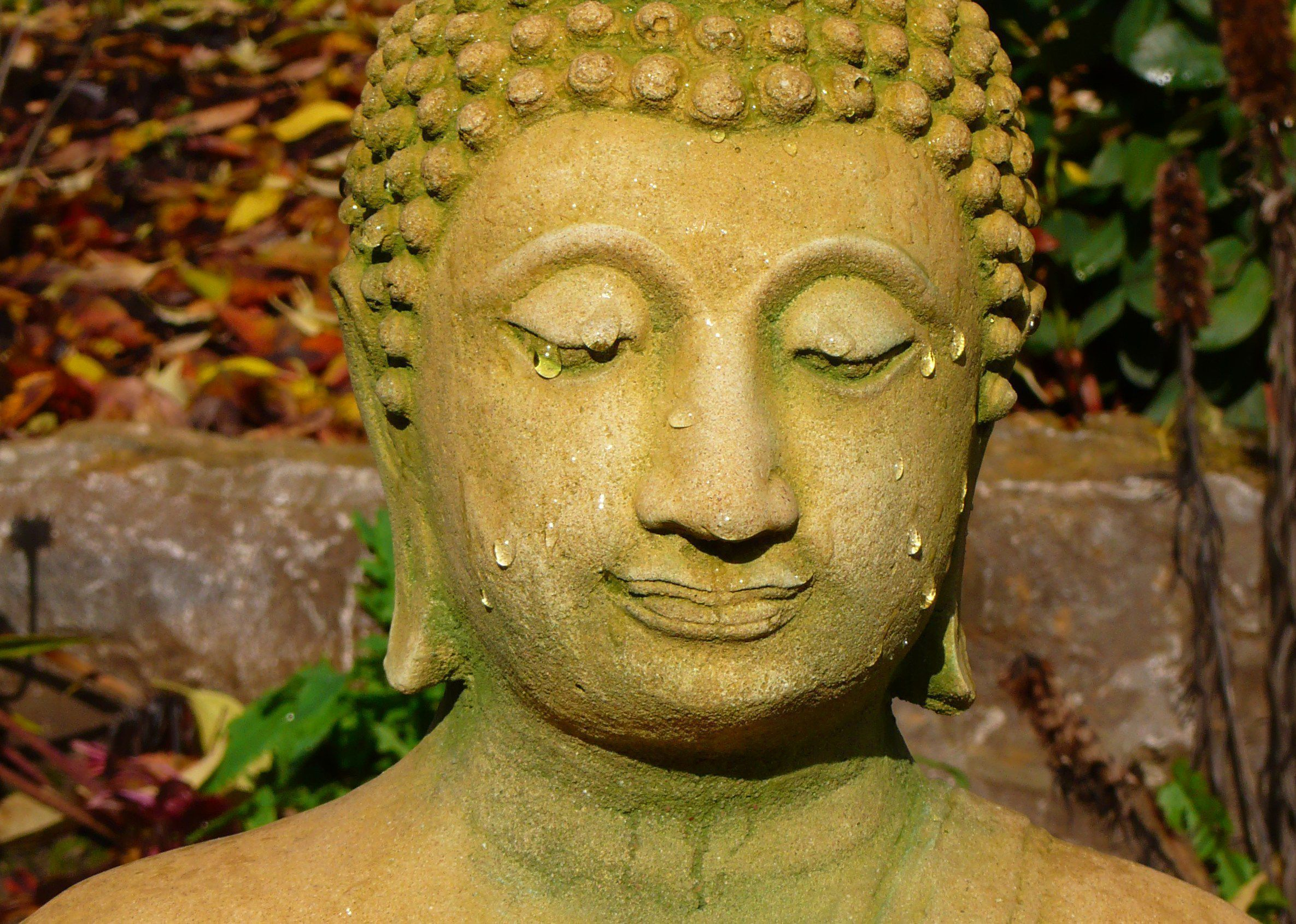 Buddha Wallpapers HD