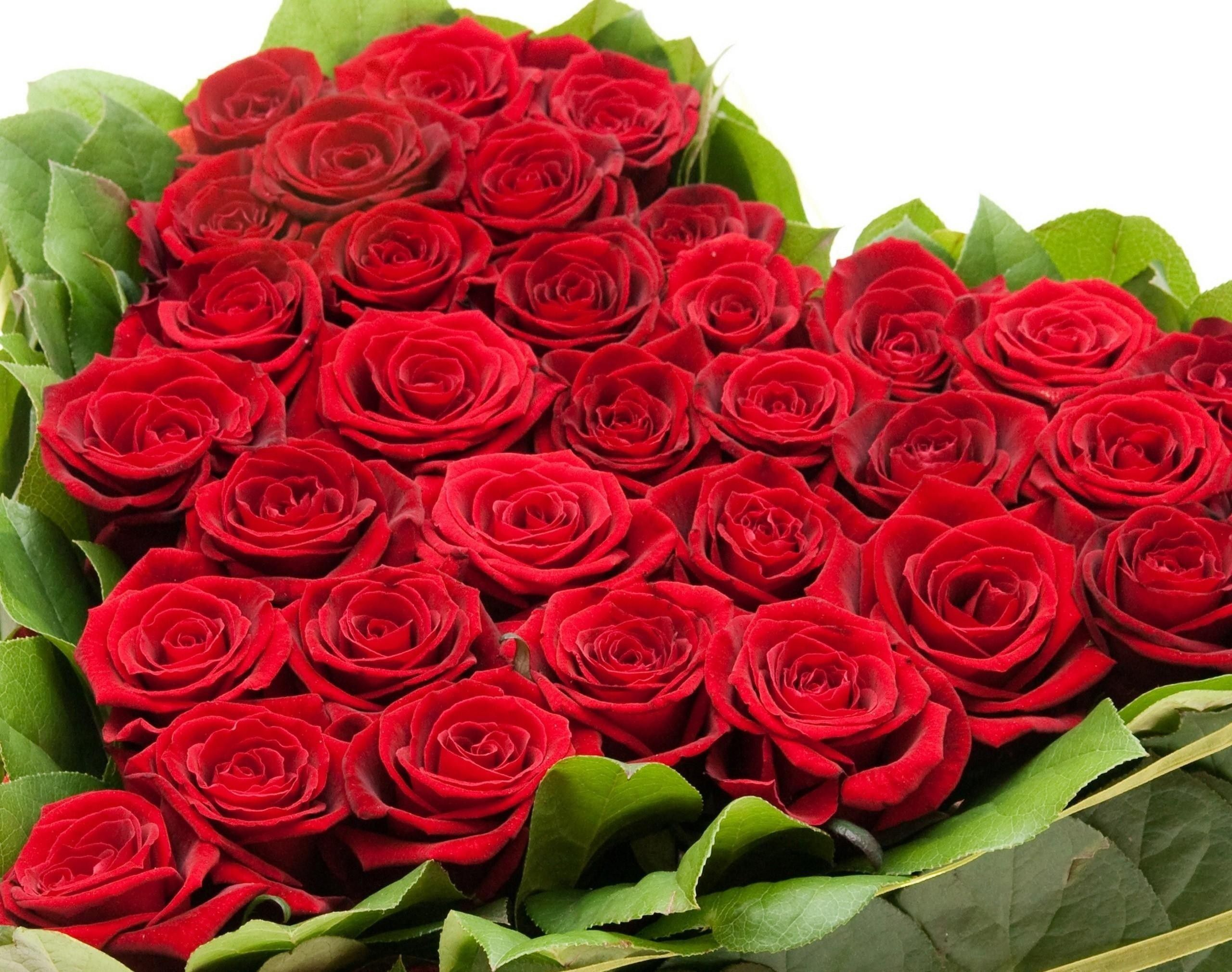 Bunch of flowers wallpapers backgrounds - Bunch of roses hd images ...