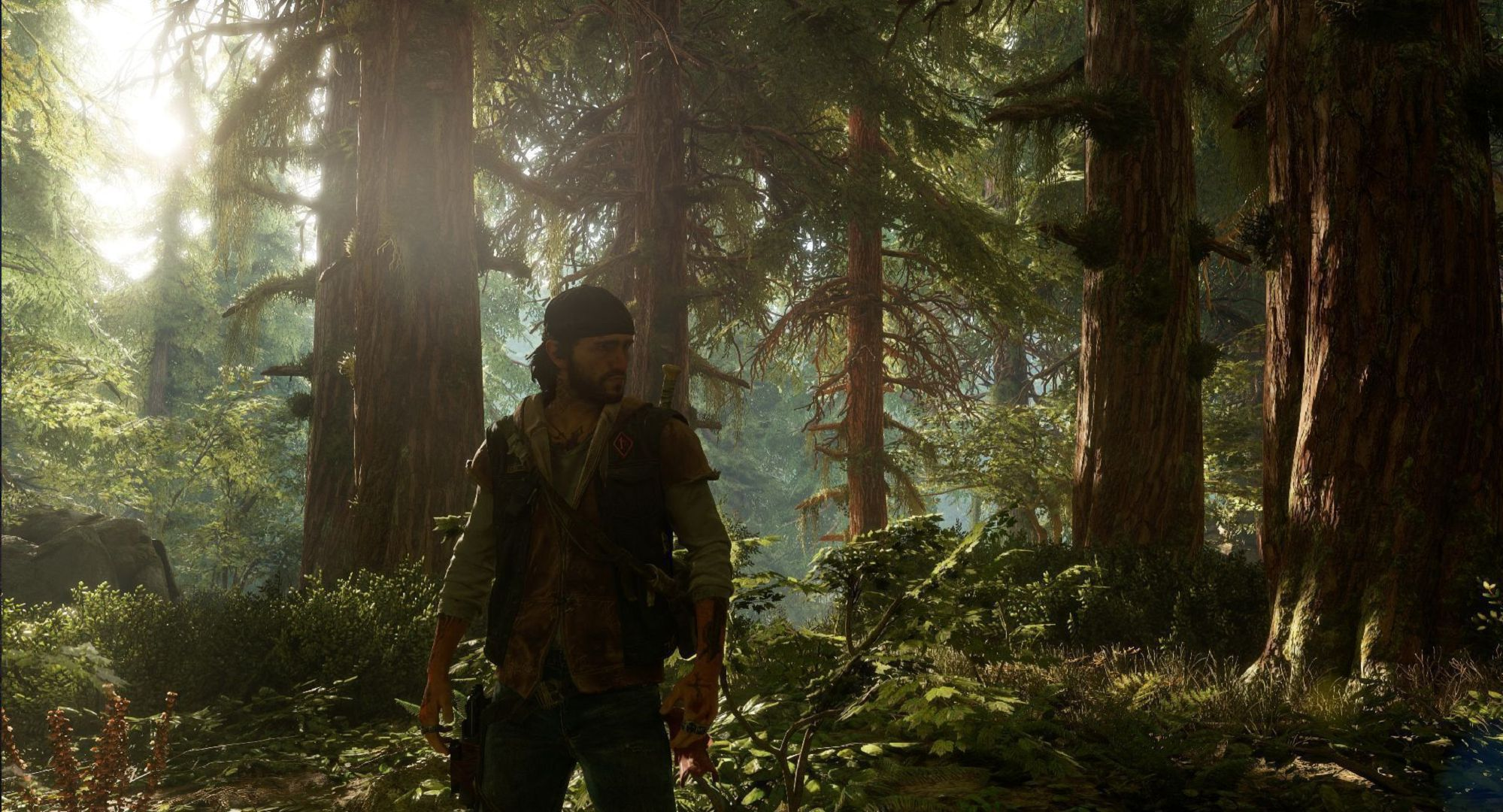 Days Gone HD Wallpaper