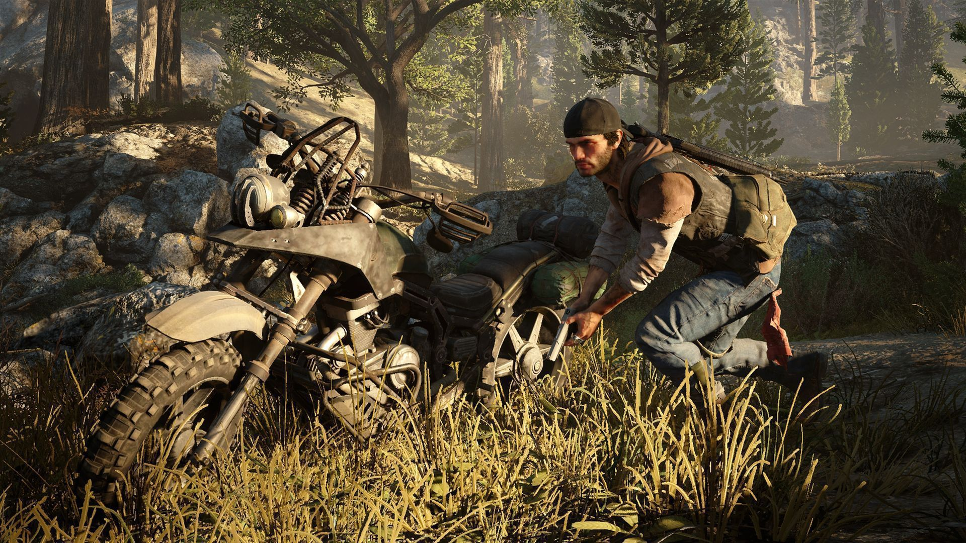 Days Gone In High Resolution