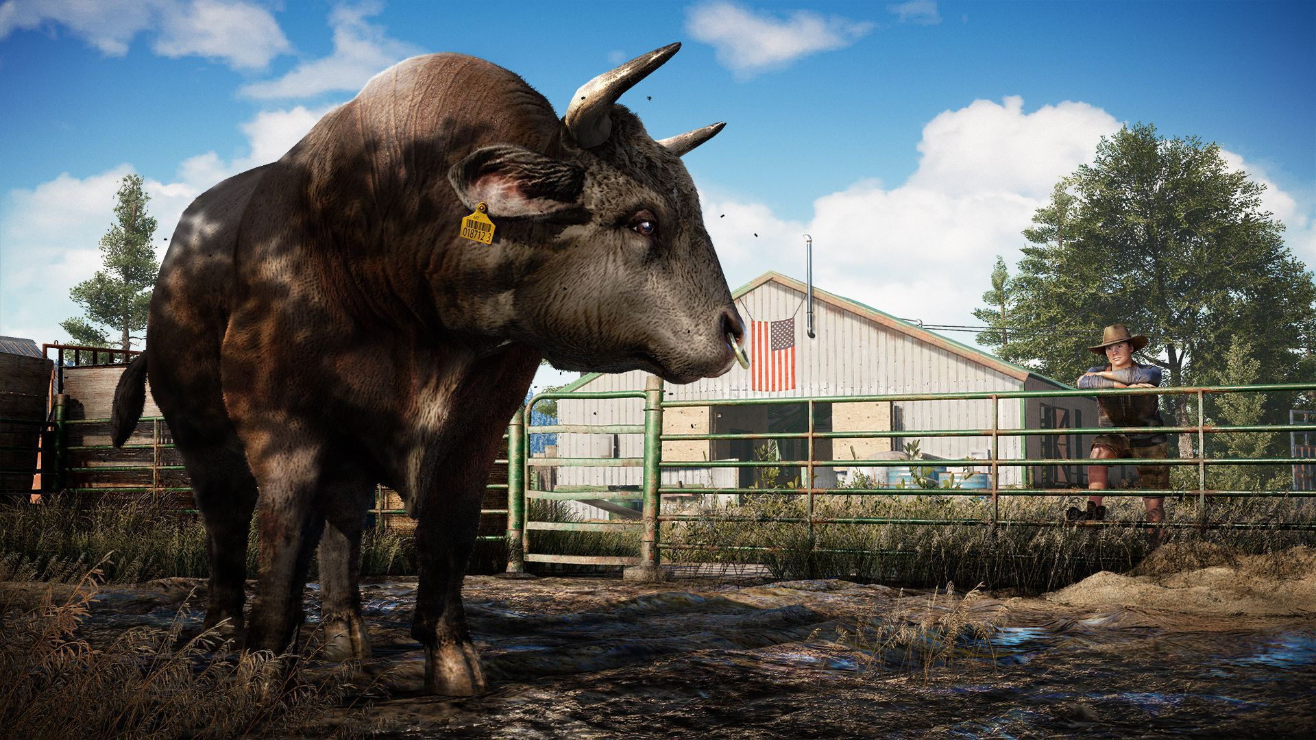 Far Cry 5 Pictures