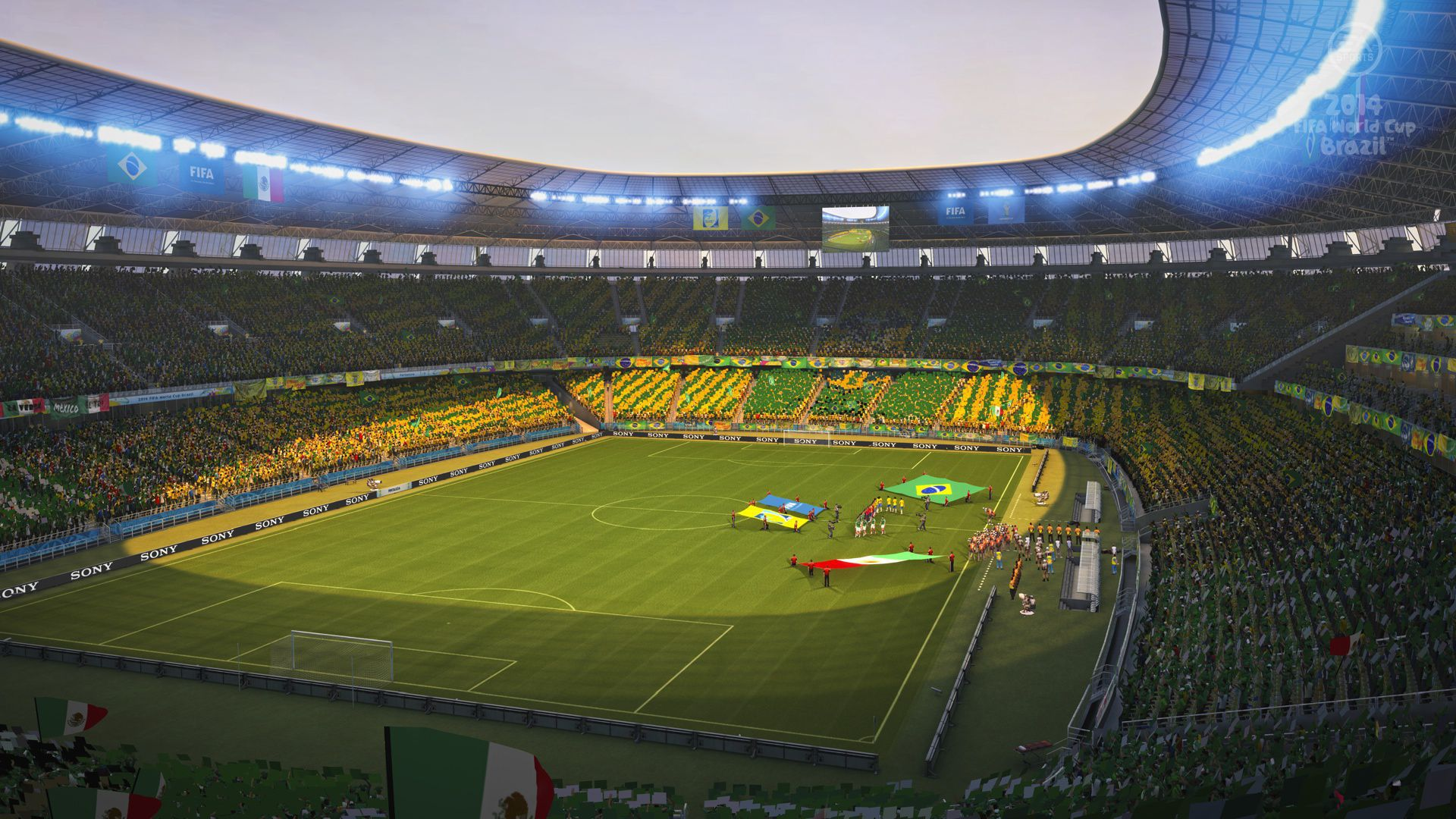 Picture Brazil World Cup 2014