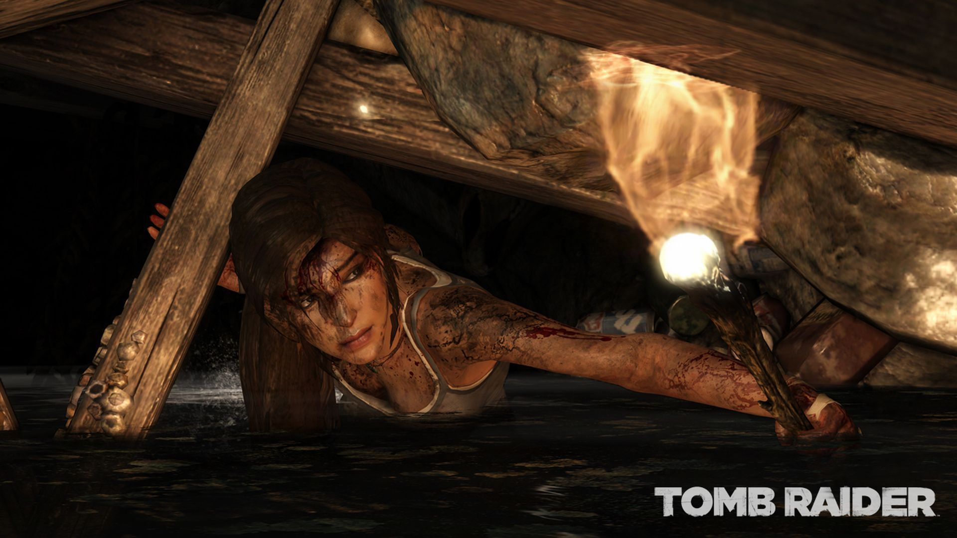 Picture Tomb Raider
