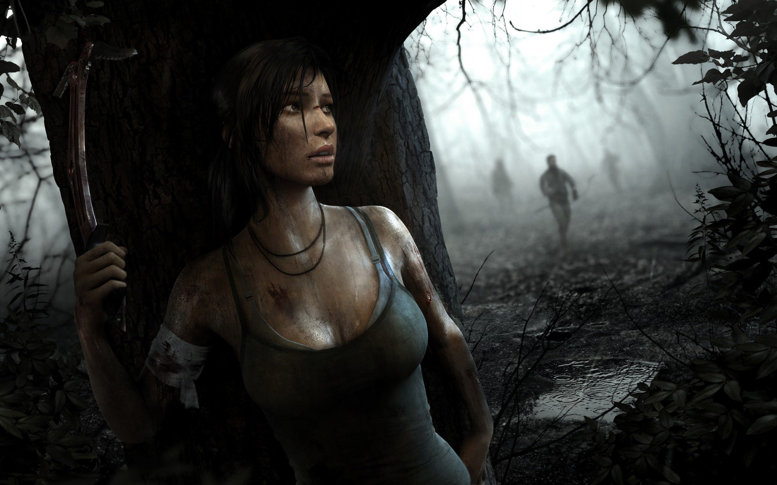 Tomb Raider Gallery