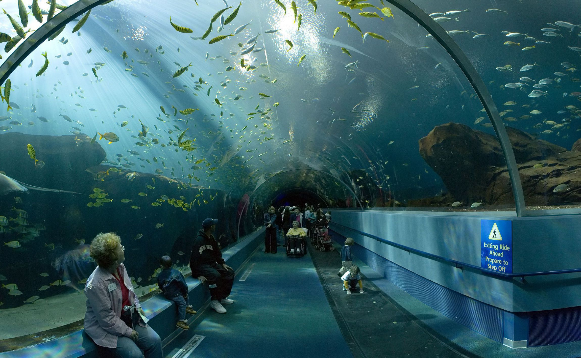 Aquarium Beautiful