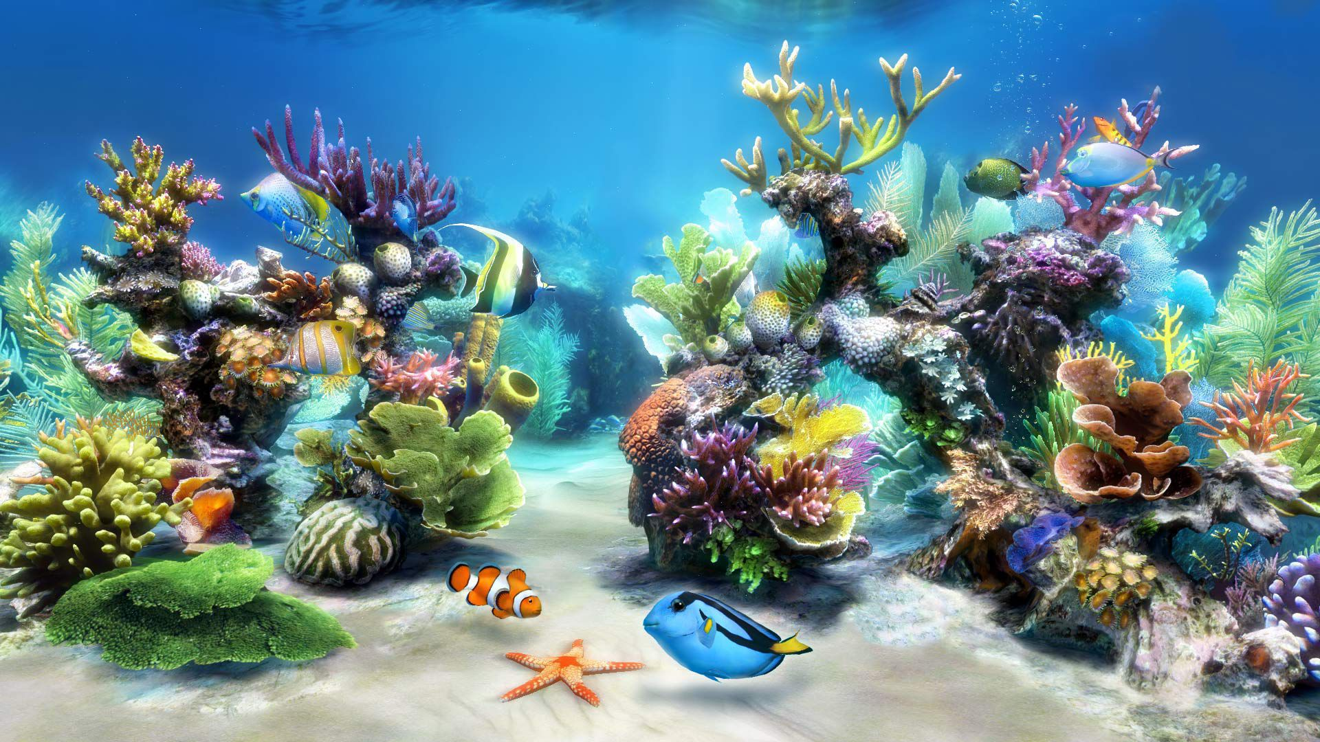 Aquarium Wallpapers