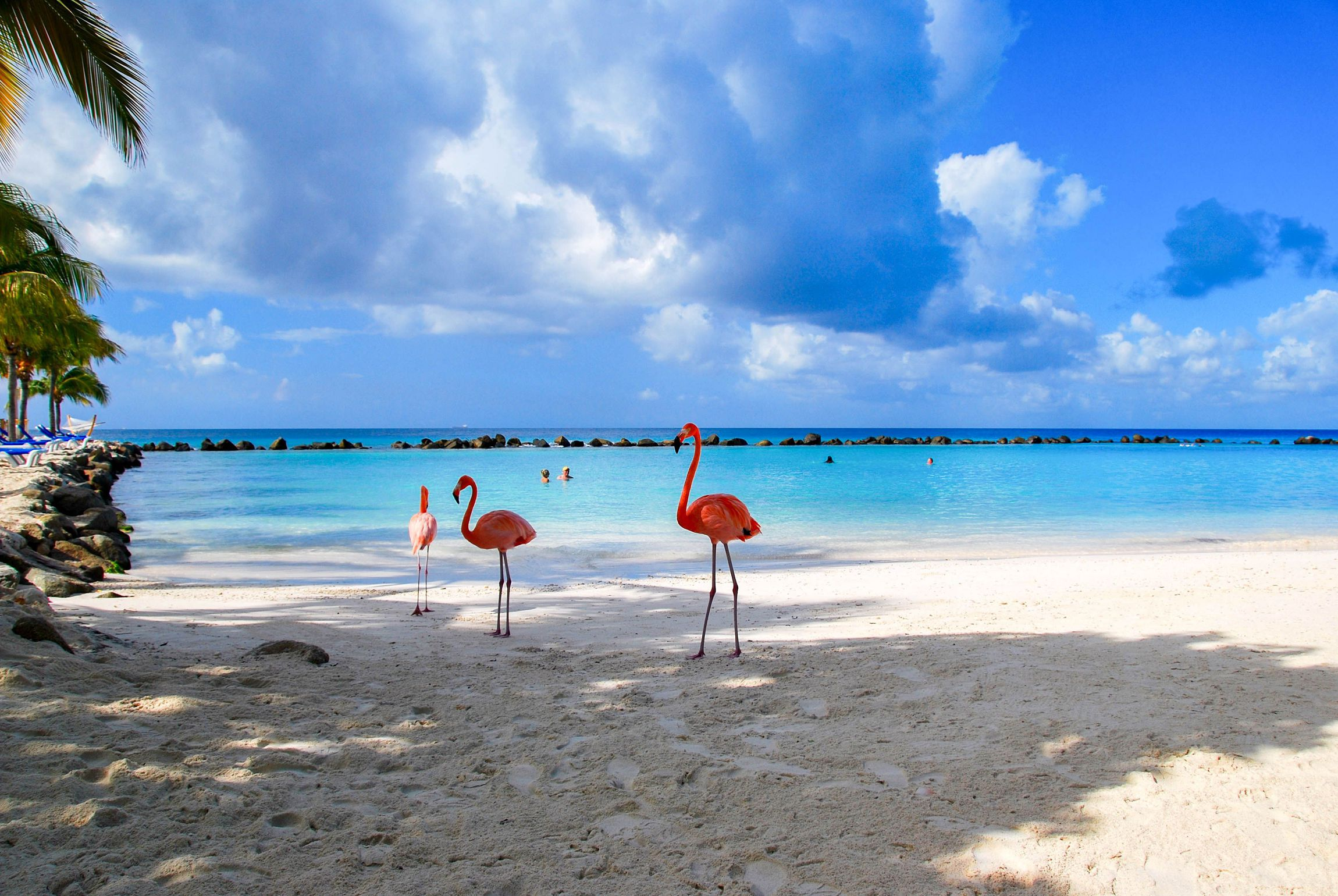 Aruba Beautiful